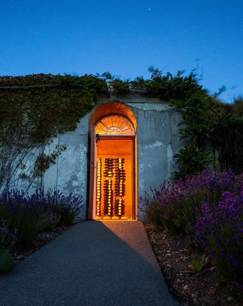 pukaki wine cellar and observatory entrance